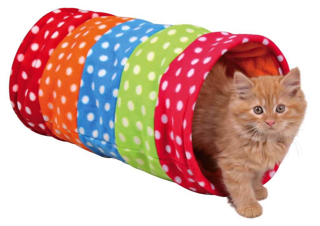 Tunnel de jeu multicolore pour chat