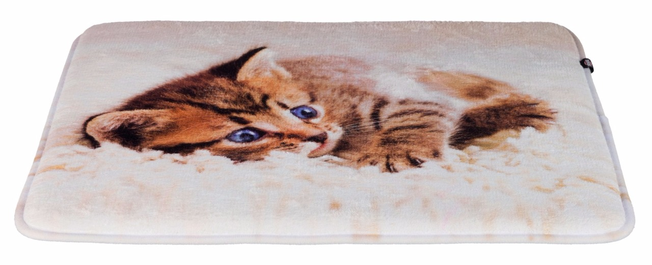 coussin tilly pour chat