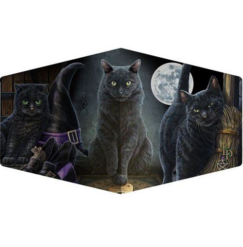 Masque de protection chat halloween sous la lune